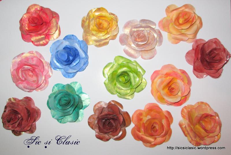 trandafiri pictati
